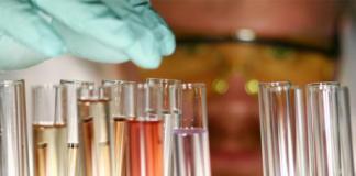 escherichia_coli__descubren_un_metodo_para_combatir_a_esta_bacteria